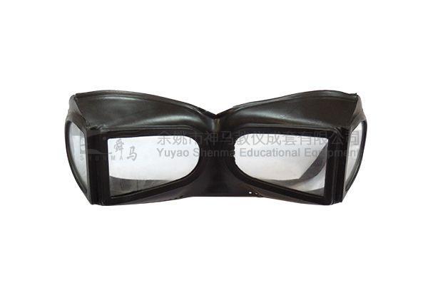 82002 Goggles